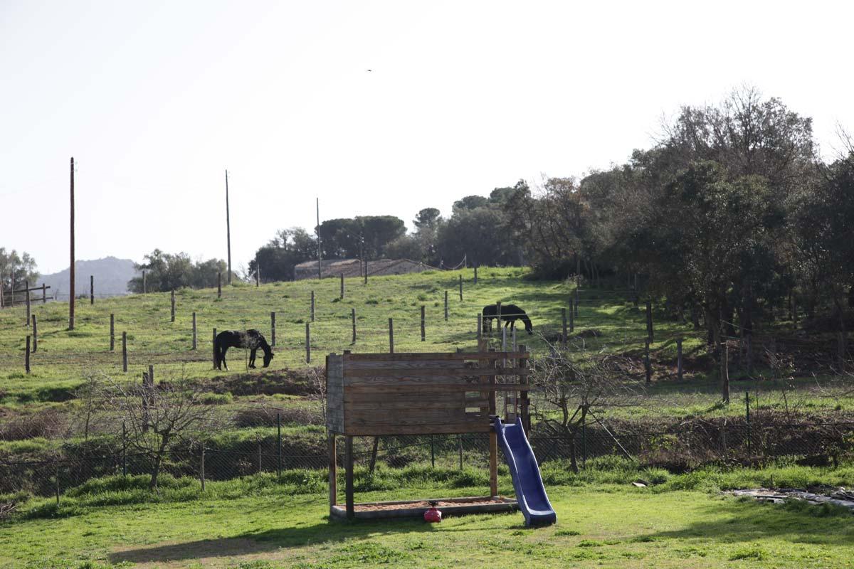 mountain-view-vista-exteriores-naturaleza-campos-verdes